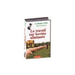 Le travail sur bovins allaitants