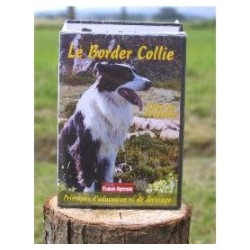 Le border collie « principe d'éducation et de dressage »